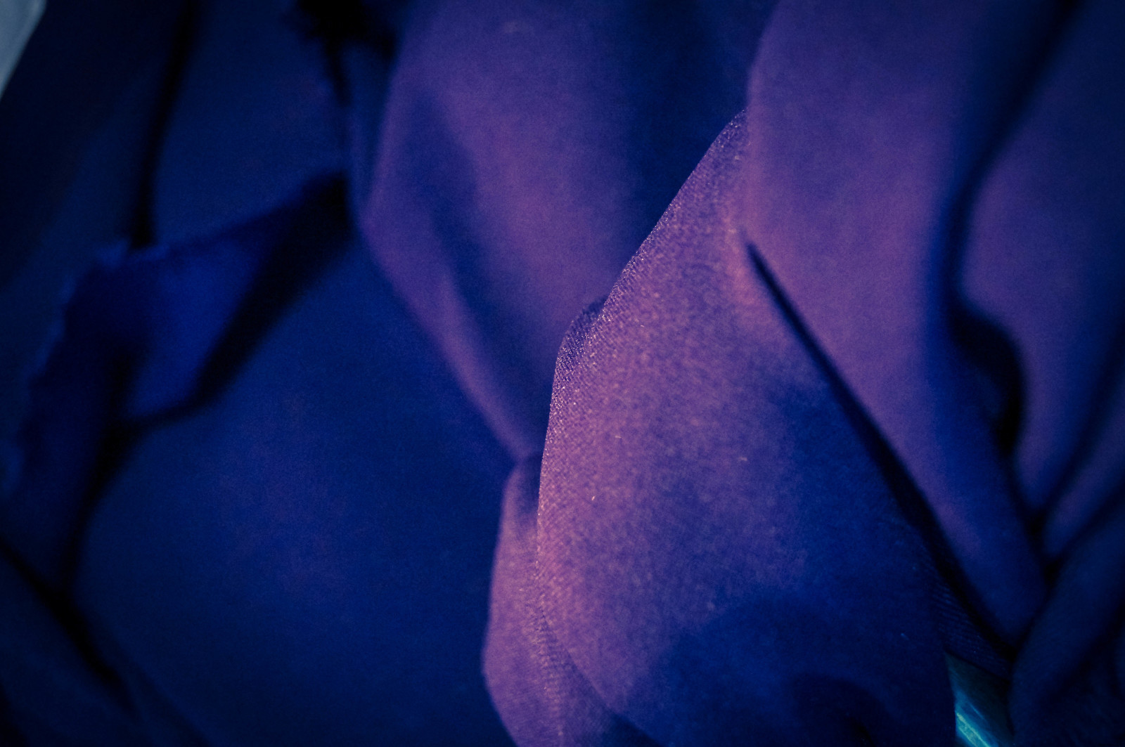 Purple Silks